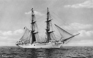 HMS_Falken_(1877)