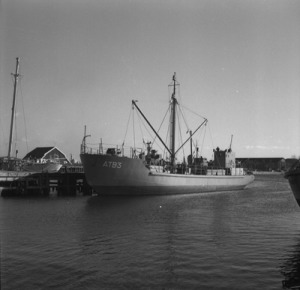 amunitionstransportfarty ATB 3 1952